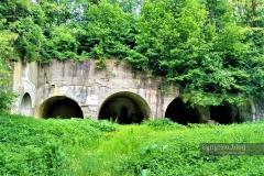 Форт-Поповичі